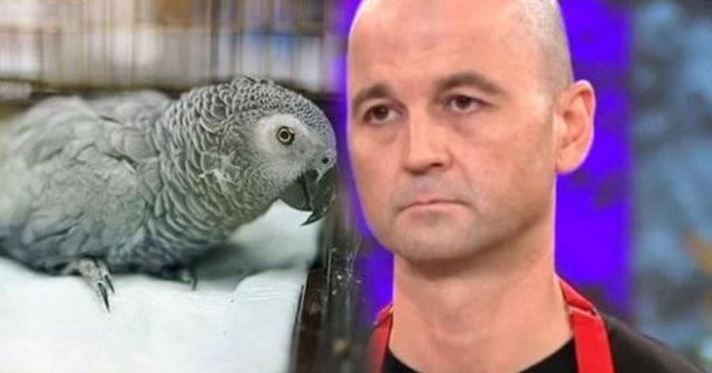 MasterChef Murat'ın Eziyet Ettiği Papağandan Üzücü Haber!
